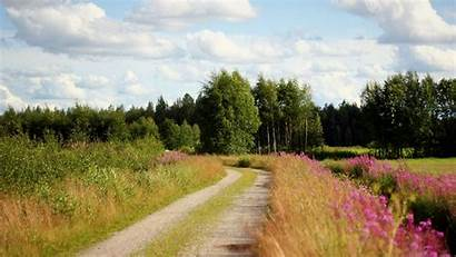 Country Road Trees Desktop Backgrounds Flowers Roadside