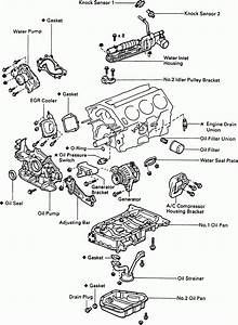 2002 Toyota Camry Engine Parts Diagram