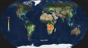 News   NASA Examines Global Impacts of the 2015 El Niño