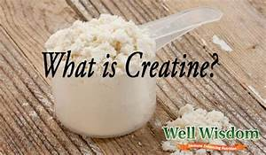 Whey Protein And Creatine  Which Is Better To Use
