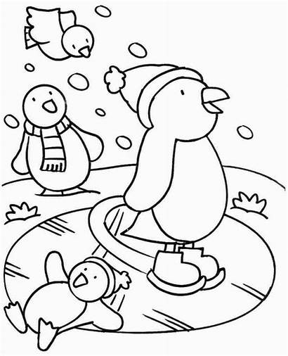 Coloring Pages Sheets Winter Animals Animal Pets