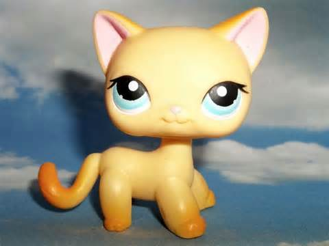 lps ebay cats littlest pet shop cat 339 raceabout ranch lps orange