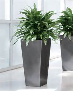 Tabletop Arrangements by Shop Double Full Silver Queen Artificial Plant At