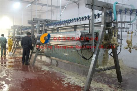 halal poultry slaughter equipment chicken slaughtering machine processing machinery buy
