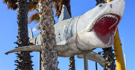 jaws shark museum academy 1975 restored movie giant scale fin better looks lot than oscars movies collection prop 1990 scvnews