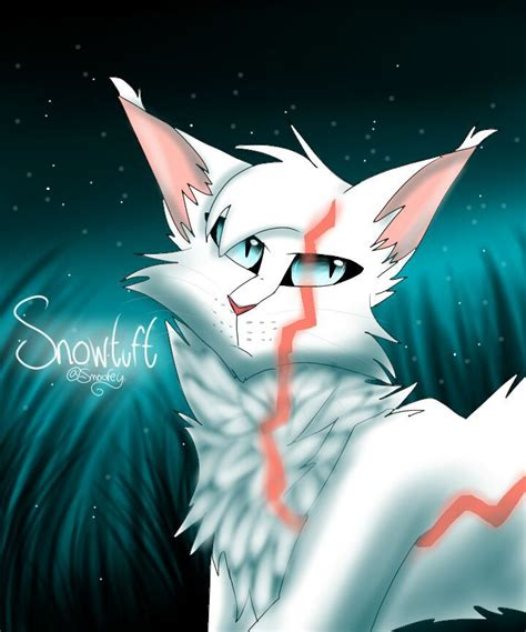 warrior cats  reader snowtuft  reader scars