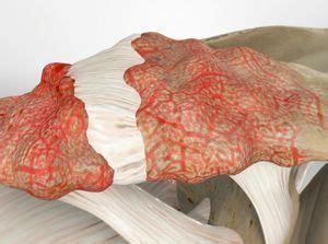 treating acromioclavicular ac joint arthritis  plano