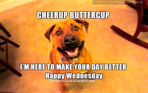 It's Wednesday, Funny & Happy Wednesday Meme with ...