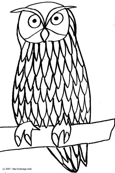 coloriage hibou  imprimer pour les enfants cp