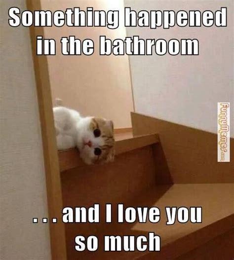 images  bathroom memes  pinterest toilets