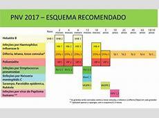 Novo Programa Nacional de Vacinação novidades em janeiro