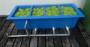 How To Make DIY Koi Pond Filter | Koi Fish Care Info