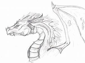 Dragon Head -Sketch by CanisLupes on DeviantArt