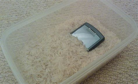 how to keep iphone in rice how to save a mobile phone and what not to do cnet