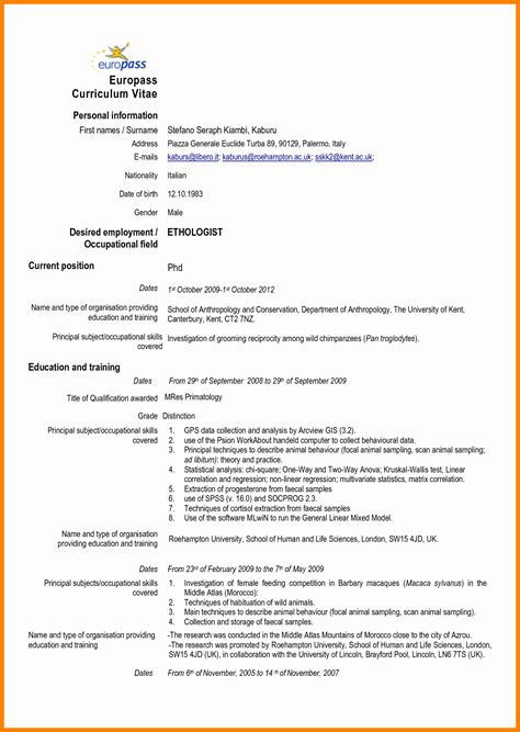 Mode De Cv by 10 Cv Model Word 2015 Theorynpractice