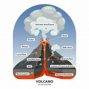 Coupe Du Volcan Avec Diagramme De Vecteur Nuage De Lave Et