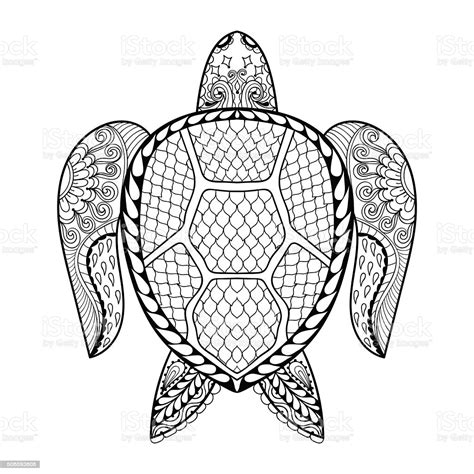 hand drawn sea turtle  adult coloring pages stock illustration  image  istock
