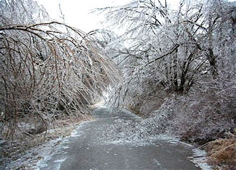 aftermath   ice storm pics