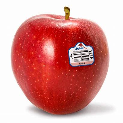 Gala Apples Apple Fruit Stemilt Lady Pink