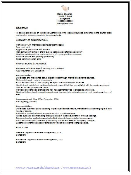 Professional Cv Sles by Professional Curriculum Vitae Resume Template For All