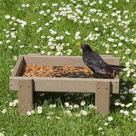 woodlook ground feeder tray