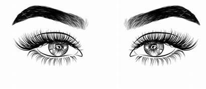Eye Eyes Eyelash Eyelashes Draw Lashes Drawing