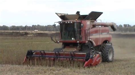 Case Ih Axial Flow 7088 Combine (harvesting Soy) Youtube