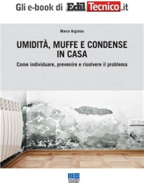 Muffe Sui Muri Interni - muffa sui muri e sulle pareti di casa ecco cosa fare per