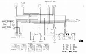 Trx450er Wire Diagram