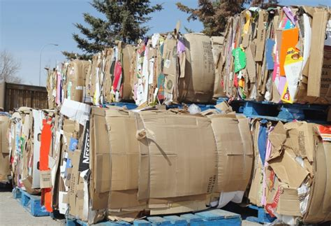 city plans  ban commercial dumping  cardboard