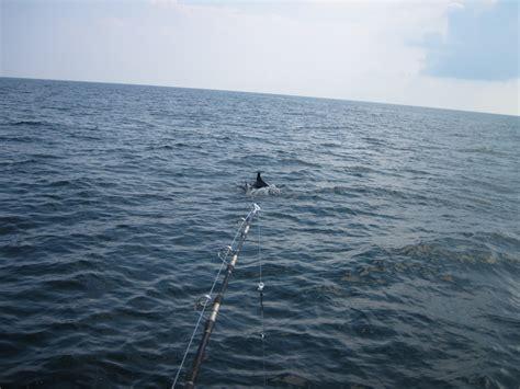 Deep Sea Fishing Boats For Sale Destin Florida by Destin Deep Sea Fishing Destin Charter Fishing Florida