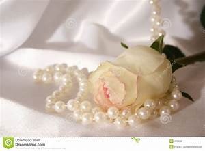 White Rose Pearls Stock Photos - Royalty Free Stock Images