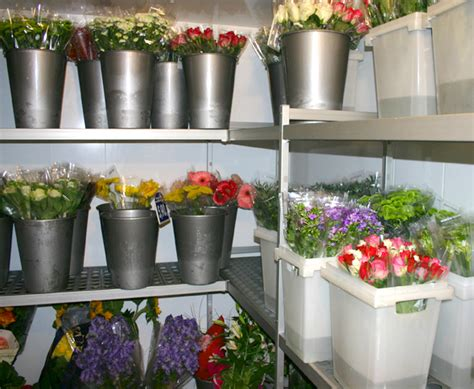 porte chambre froide occasion casaflor com chambre climatique pour fleurs coupées