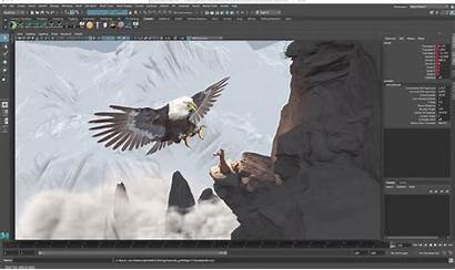 Nest Eagle Behance