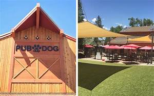 The Most Dog-friendly Restaurants in the U.S. | Travel ...