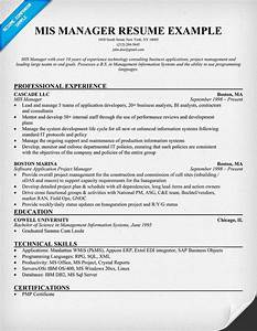 Mis  Manager Resume Example  Resumecompanion Com   Career