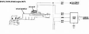 1996 Honda Civic Hatch Iacv   Need Help