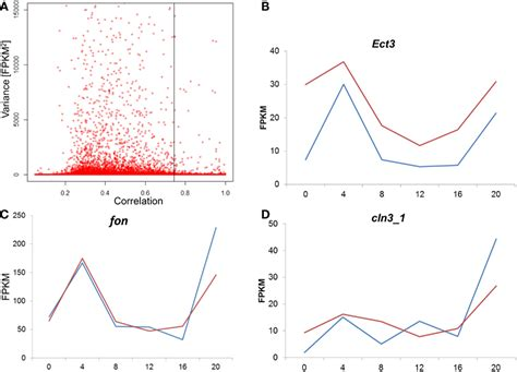 Gene Expression Associated With Early And Late