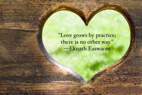 love grows  practice      eknath
