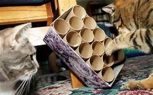 Katzenspielzeug Selber Machen Karton : katzenspielzeug selber machen teil 1 schlappohr ~ Frokenaadalensverden.com Haus und Dekorationen