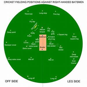 Cricket Fielding Positions Stock Vector  Image Of Bowler