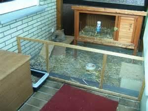 rasen auf balkon rasen auf balkon kaninchen carprola for