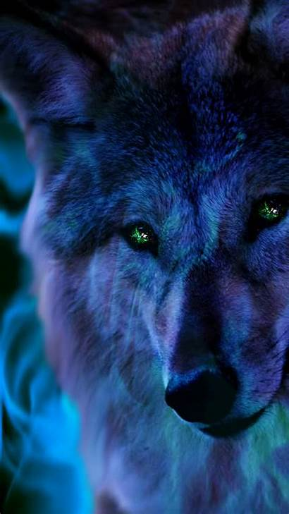 Wolf Cool Iphone Resolution Wallpapers King Backgrounds