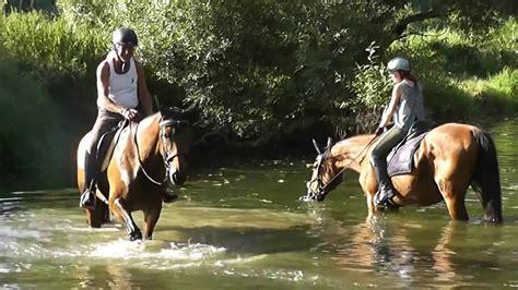 pferde drei tage im jagsttal reitenhorsescavallo