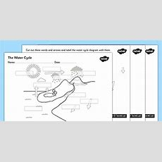 Water Cycle Cut And Stick Labelling Worksheet  The Water Cylce