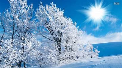 Winter Wallpapers Wide Snow Sunny Nature Fotos