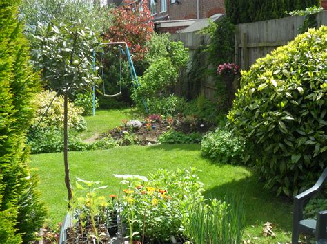 back to gardening my back garden and my allotment not just greenfingers
