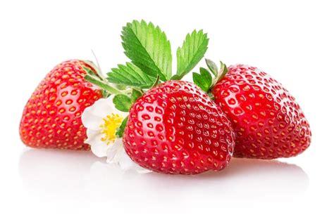 cuisine journal des femmes tout sur la fraise la choisir la cuisiner la conserver