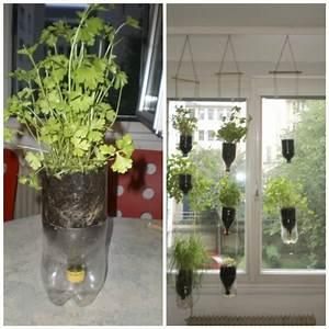 Hängende Pflanzen Für Draußen : upcycling 11 kreative ideen f r ihre pflanzen ~ Sanjose-hotels-ca.com Haus und Dekorationen