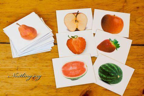 gesundes gemüse im winter obst sortieren schule montessori kleinkinder karten